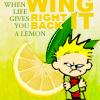 kiratael: When life gives you a lemon, wing it right back - Calvin (Calvin)