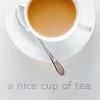 jottingprosaist: A nice cup of tea (tea)