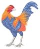 gallusrostromegalus: blue and orange chicken on a white background (chicken, gallusrostromegalus, green chicken)