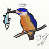 egh: My Kingfisher (kingfisher, Lemberg's art)