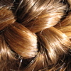 chestnut_filly: A close-up photograph of auburn hair in a French braid (Default)