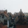 earlymorningechoes: (rainy city)