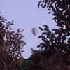 thelittlepinkdinosaur: (Balloon)