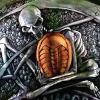 askerian: Mechanicsburg skeleton holding a trilobite device (GG_skeleton and trilobite)