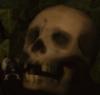 necile: (skull)