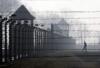 etumukutenyak: (Auschwitz-Birkenau)