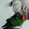 andtheblackbird: Photo of a parrot perched on a person's shoulder, both in profile. (Default)