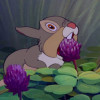 modertheresa: thumper from bambi eating a flower (thumper)