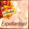 emmaruth: Harry Potter Hogwarts Houses (Gryffindor Expelliaramus)