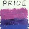 lils1138: (Bi Pride)