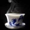 stonepicnicking_okapi: Blue-and-white teacup (Teacup)