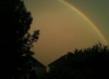 quipxotic: A rainbow in the distance behind several trees and  houses (rainbow)