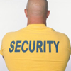 mnt_raph: (Dom Security Yellow)