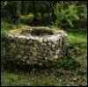 wishingwell44: Photo of cobblestone well in middle of forest with bright green moss growing on top. Forest plants grow around it. (Default)