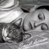 thornsilver: (sweet dreams with cat)