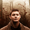 someoneworthfinding: (dean)