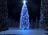 seregond: (новогодняя)