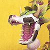 keoni: (cowplant)