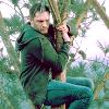 cupidsbow: (venom - eddie in tree)