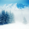 sexycazzy: (Misc: misty winter mountains)