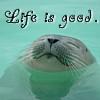 batyatoon: (life is good)