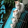 batyatoon: (family)