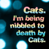 ratherastory: ([B5] Nibbled to death by cats)
