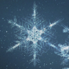 freshbakedlady: macro photograph of snowflake against blue background (Snowflake)
