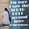 "thedarlingone: penguin captioned ""I'm sure I saw the South Pole around here somewhere"" (penguin south pole)"