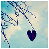 cirohiqea: A heart-shaped leaf hanging from dry branches (Heart Leaf)