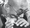 firecat: dalai lama hugging a penguin (penguin hug)