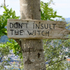 "dragonlady7: An image of a hand-engraved sign nailed to a birch tree, reading ""Don't Insult The Witch"" (witch)"