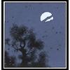 nnmpsn: (nighttime)