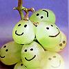 kacts: (grapes)