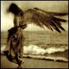 erinism: from lj comm obsessiveicons (angel)