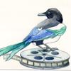 trelkez: (fanworks - video magpie)