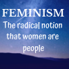 opensummer: image of a starry night with the text feminism the radical notion that women are people on it (feminism)