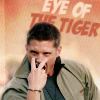 beckyo: (dean - eyeof the tiger)