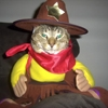 dick_the_cat: (costume)