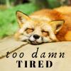 nerakrose: sleeping fox with the text too damn tired (too damn tired)