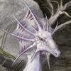heron61: (Dragons & Magic)