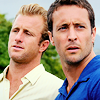kapuahi: (H50 - McDanno Animal Planet)