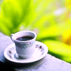 onlysmallwings: tea in a white mug and saucer in front of a leafy background (Free Hugs!)