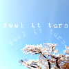 """naye: a blooming cherry tree and a blue sky with the words """"feel it turn"""" (feel it turn)"""