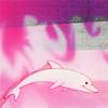betterdolphin: (Better Dolphin)
