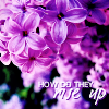 "purple_smurf: Lilacs and the text ""how do they rise up"" (Default)"