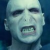 wand_wavers: (voldemort)
