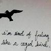 wordsaremyfaith: ([stock] caged bird no more)