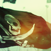 rhi: the skull and crossbones, waving in the breeze (pirate)