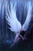 danorsong: (orignal angel)